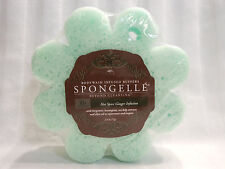 Spongelle Body Wash in a Sponge Infused Buffer Hot Spice Ginger 10+ Washes