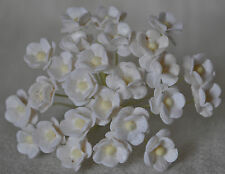 100 WHITE DOUBLE-LAYERED daisy (S) Mulbery Paper Flowers for cards wedding