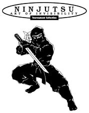 Ninjutsu Training - Workout, Drills, Techniques & Secrets (Authentic PDFs)