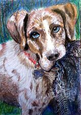 ACEO Original Art  Hunting Dog and his Blanket Sport Setter by LGarcia