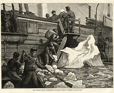 NARES ARCTIC EXPEDITION ICEBERGS Fresh Water Source, Crew Hauls Ice Onboard 1875