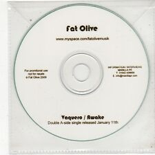 (FS565) Fat Olive, Vaquero / Awake - 2009 DJ CD