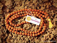 RUDRAKSHA RUDRAKSH JAPA MALA ROSARY 108 +1 BEAD YOGA HINDU PRAYER MEDITATION YOG