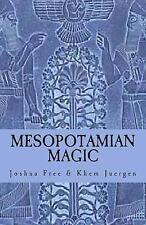 Mesopotamian Magic : A Comprehensive Course in Sumerian and Babylonian...