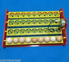✔ ✔ ✔ Automatic 36 Egg Turner Tray with Motor 1/240 revolution / minute  ✔ ✔ ✔
