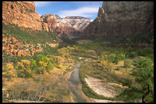 392036 The Peaceful Virgin River A4 Photo Print
