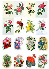 """Decoupage Paper [10sh A4 / 8""""x12""""] Flowers Roses FLONZ 020 Vintage Scrapbooking"""