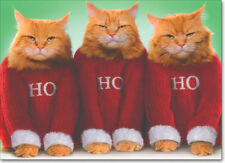 Ho Ho Ho Cats Boxed Christmas Cards - 10 Funny Greeting Cards by Avanti Press