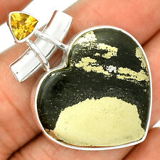 Heart Pyrite  In Magnetite - Healer's Gold 925 Silver Pendant Jewelry SP214956