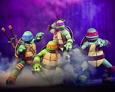 Teenage Mutant Ninja Turtles 8 x 10 GLOSSY Photo Picture