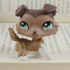 "IN HAND LPS LITTLEST PET SHOP MINI 3"" FIGURE TOY Chocolate Collie dog #1330"