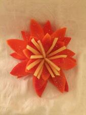 Orange sponge foam LOTUS flower