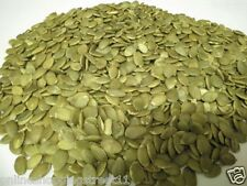 500gms* BEST QUALITY WITHOUT SHELL RAW PUMPKIN SEEDS (LOOSED PACKED)