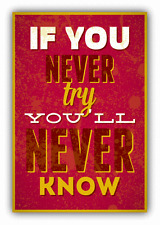 """If You Never Try You Will Never Know Car Bumper Sticker Decal 4"""" x 5"""""""