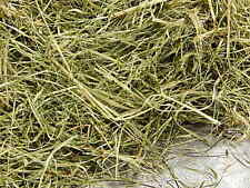 Meadow Grass Hay 1st Cut 14oz Food Treat Bedding for Rabbit Hamster Chinchila