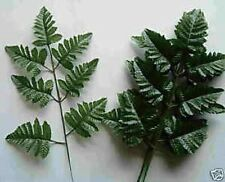 72 Stems Of Silk Leather Leaf Fern (Silk Flower Greenery,Filler Stems)