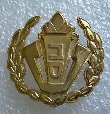 Israel Prison Service Beret  Pin