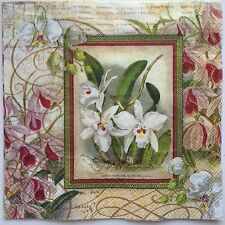 2 single paper napkin (cocktail Size) Decoupage Collection Flowers Flower Orchid