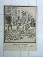 1917 Army Officers New Offensive Spring Potatoes Rhs Witley