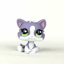 Authentic Littlest Petshop 2033 Cat Baby Kitten Kitty / Chat Chaton Bébé LPS.