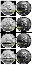 4x CANADA 2012 CANADIAN BEAVER NICKEL QUEEN ELIZABETH 5 CENT COIN LOT UNC