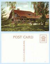 A California Home c1913 Architecture Residence Pergola Flowers Postcard