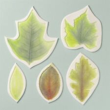 FMM 4 Piece Leaf Veining Mats