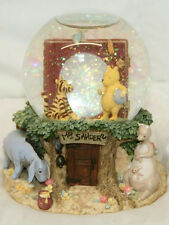 "5.5"" DISNEY WINNIE THE POOH MR. SANDERS PHOTO SNOW GLOBE SNOWDOME"