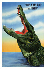 Drop In Any Time In Florida Poster Print, 24x36