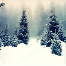 Christmas 10'x10' Computer/Digital Vinyl Scenic Photo Background Backdrop BHF388