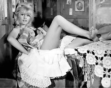 BRIGITTE BARDOT SPECIAL    8X10 PHOTO