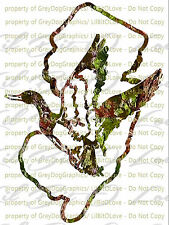 Camouflage Camo New Jersey Duck Hunter Hunting Vinyl Decal Sticker Fowl Drakes