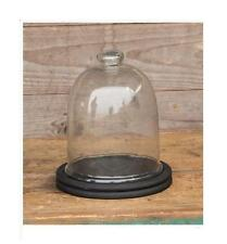 Glass Display Cloche Dome BELL JAR~Small with Black Wood Base