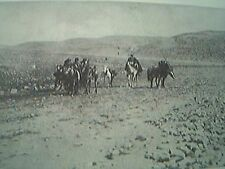 book picture 1930s - arabia the road from maan to the wadi musa