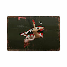 Warhawk 2. WK Flugzeug Nose Art Pin Up Vintage Retro Sign Blechschild Schild NEU