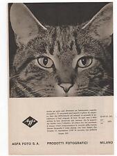 Pubblicità epoca vintage FOTO AGFA MILANO PHOTO advert werbung publicitè reklame