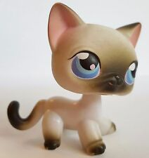 Littlest Pet Shop RARE SIAMESE CAT 5 RETIRED  Hasbro LPS hub Kitten 2004