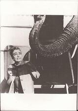 PF Zirkus des Todes ( Joan Crawford )