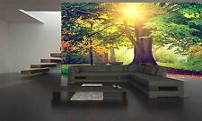 PARK OF  MAJESTIC TREES  Wall Mural Photo Wallpaper GIANT WALL DECOR Free Glue