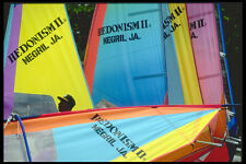 328020 Windsurfers Ready For Action Hedonism II Negril A4 Photo Print