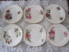 SIX BEAUTIFUL VINTAGE ENGLISH FINE BONE CHINA TEA PARTY PLATES IN PINK FLORALS