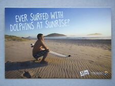 Avant Card #17942 2014 Sta Travel Ever Surfed With Dolphins At Sunrise Postcard
