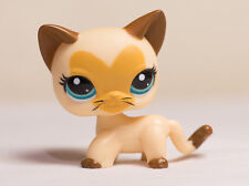 Littlest Pet Shop LPS #3573 Siamese Kitty Cat Tan Brown Short Hair w Heart Face