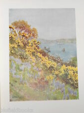 Cornwall 1915 Antiquarian Print of The Banks of the Fal, Falmouth: G F Nicholls