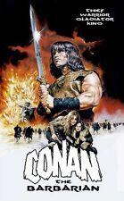 CONAN THE BARBARIAN Movie Poster RARE Arnold Schwarzenegger Art Wall 24X32 Inch