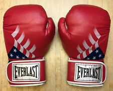 Everlast USA Patriotic Boxing Gloves 14 Ounces