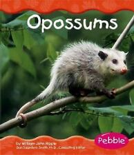 Opossums (Woodland Animals)-ExLibrary