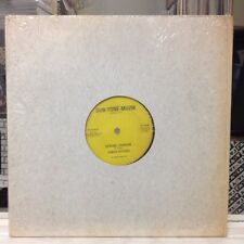 "NM 12""~JUNIOR DELGADO~A-TEAM~Special Lady~Special Version (Dub)~[1986 DUB TONE]"