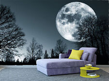 Forest Night Trees Moon Dark Sky Wall Mural Photo Wallpaper GIANT WALL DECOR