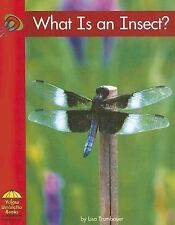 What Is an Insect? Science